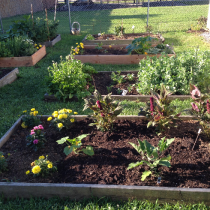 Parkesburg Library Garden Update