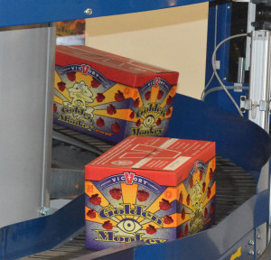 Cases of Victory Brewing's Golden Monkey come off the state-of-the-art production line at the new brewery facility in West Sadsbury. (Photo courtesy of The Unionville Times)